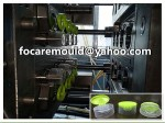 China dos color flip top molde champu botella